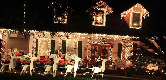 Christmas Photo 3