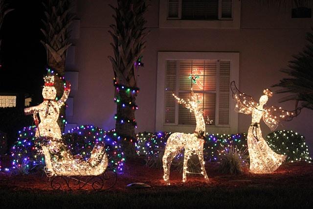 Christmas Photo 7