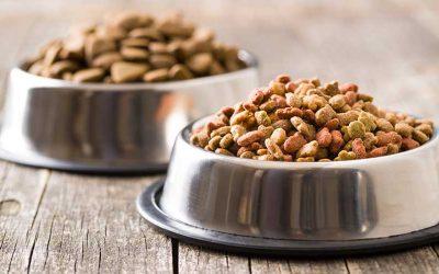 Dog/Cat Food Drive